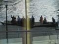 Havank praam-uitstap op het water 105
